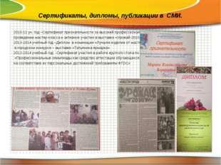 Сертификаты, дипломы, публикации в СМИ. 2010-11 уч. год –Сертификат признател