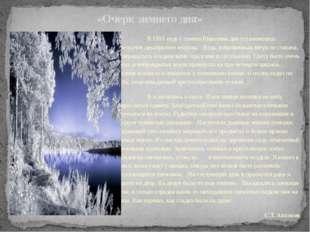 «Очерк зимнего дня» В 1813 году с самого Николина дня установились трескучи