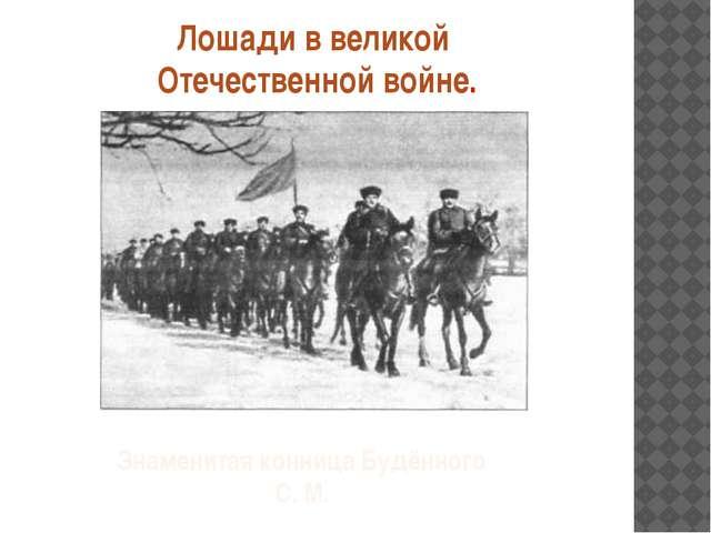 Лошади в великой Отечественной войне. Знаменитая конница Будённого С. М.