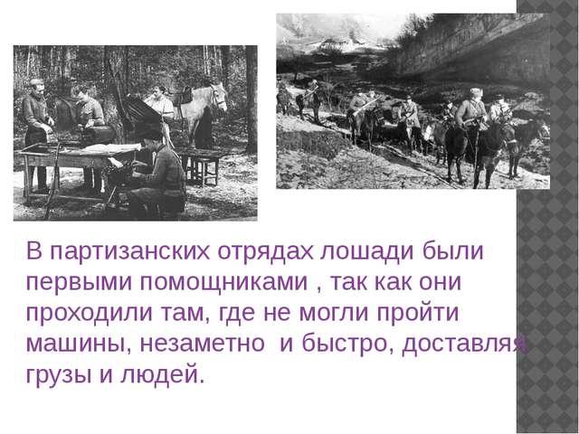 В партизанских отрядах лошади были первыми помощниками , так как они проходил...