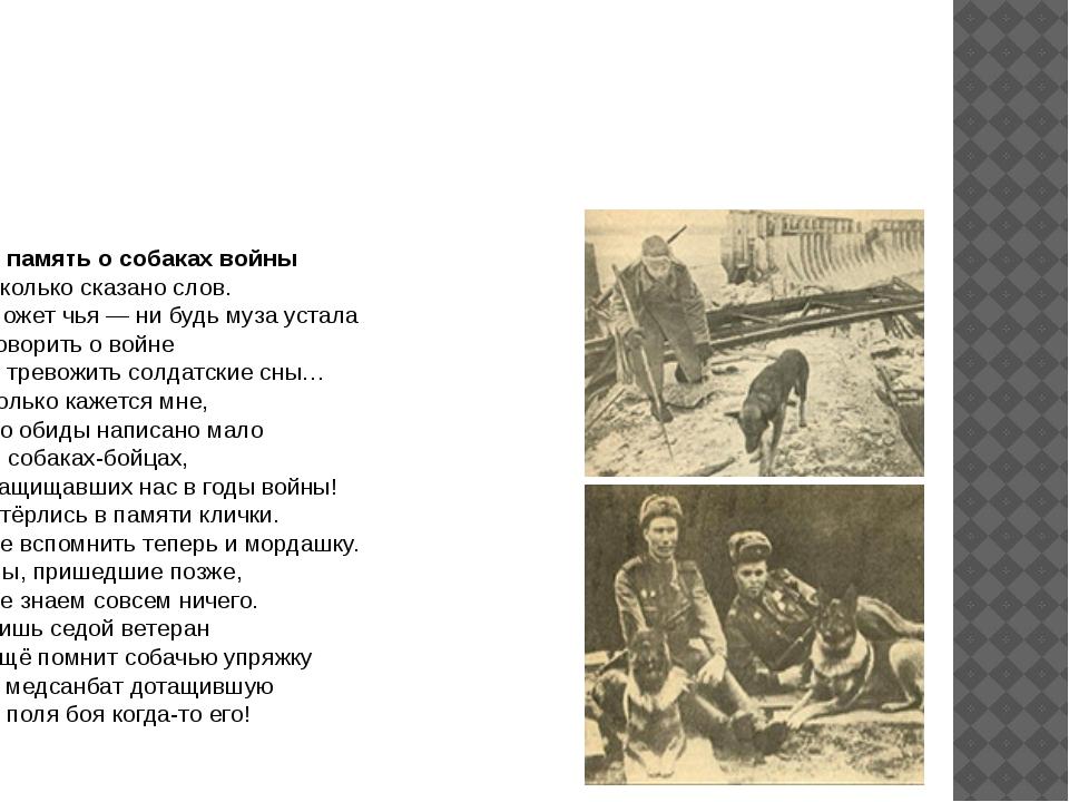 Собаки в годы войны В память о собаках войны Сколько сказано слов. Может чья...