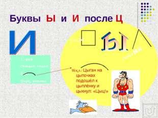 Буквы Ы и И после Ц 1.-ция Станция, лекция 2.-и- Цирк, цитата Искл.: Цыган на