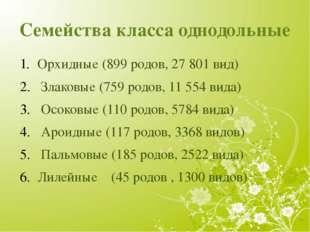 Семейства класса однодольные Орхидные(899 родов, 27801 вид) Злаковые(759 р