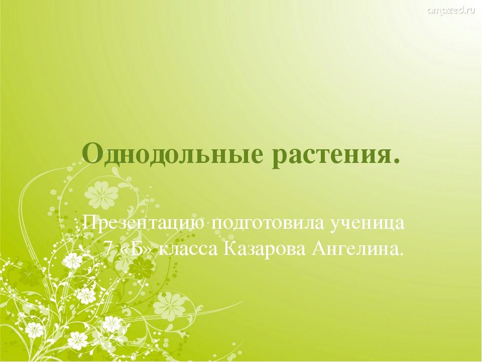 Однодольные растения. Презентацию подготовила ученица 7 «Б» класса Казарова А...
