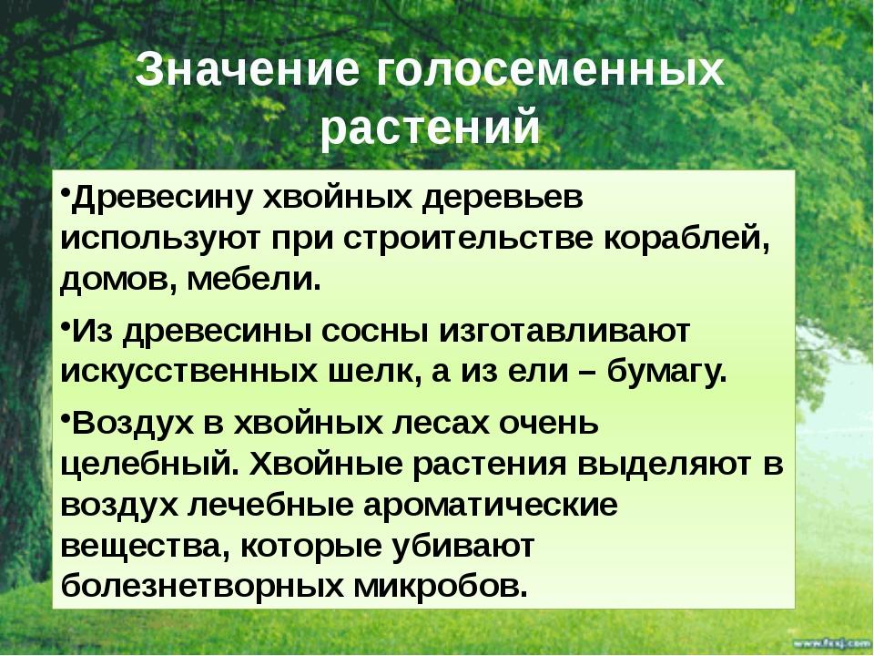 Значение голосеменных растений Древесину хвойных деревьев используют при стро...