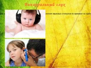 Бинауральный слух Человек и животные обладают пространственным слухом, т. е.