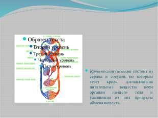 Кровеносная система состоит из сердца и сосудов, по которым течет кровь, дост