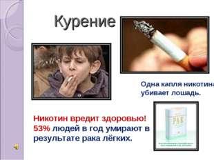 Курение Одна капля никотина убивает лошадь. Никотин вредит здоровью! 53% люд