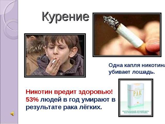 Курение Одна капля никотина убивает лошадь. Никотин вредит здоровью! 53% люд...