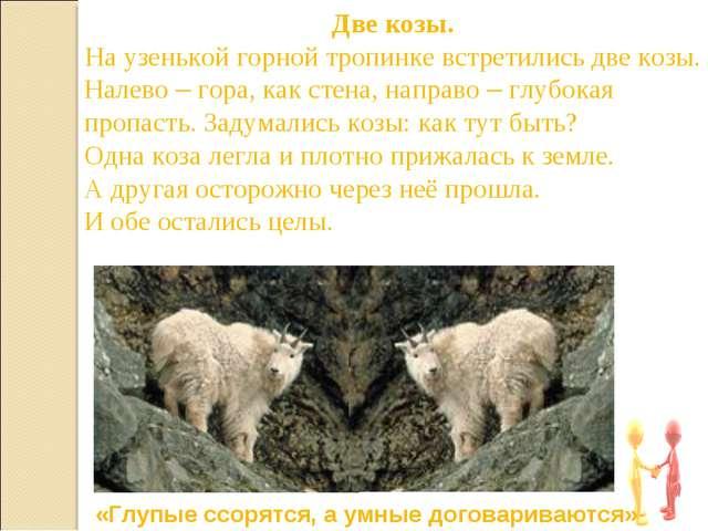 Две козы. На узенькой горной тропинке встретились две козы. Налево – гора, ка...