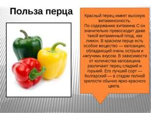 Красный перец имеет высокую витаминозность. По содержанию витамина С он значи