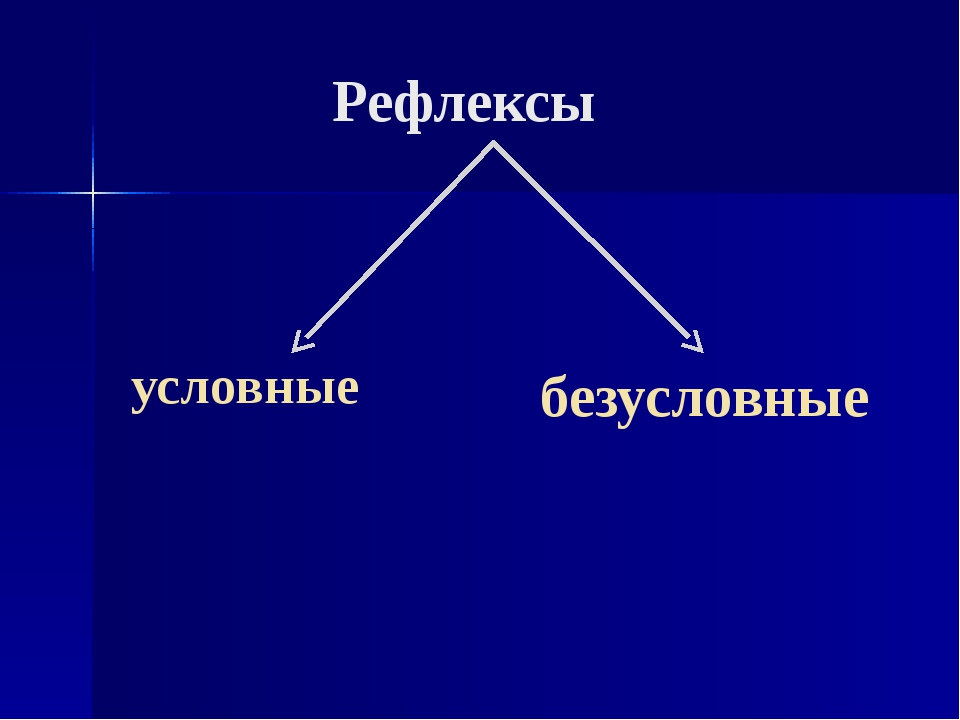 Условные рефлексы классификация значен возрастные особ видио