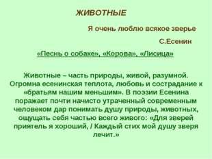 ЖИВОТНЫЕ Я очень люблю всякое зверье С.Есенин «Песнь о собаке», «Корова», «Ли