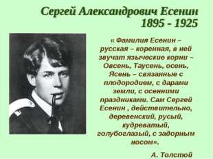 « Фамилия Есенин – русская – коренная, в ней звучат языческие корни – Овсень,