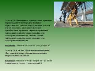 Статья 228. Незаконные приобретение, хранение, перевозка, изготовление, перер