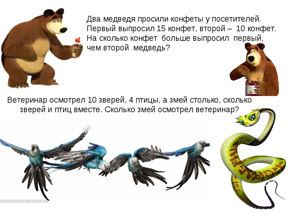 Ветеринар осмотрел 10 зверей, 4 птицы, а змей столько, сколько зверей и птиц...