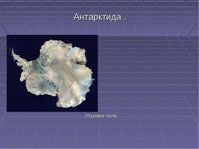 Антарктида . Игровое поле