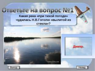 Назад Какая река «при тихой погоде» чудилась Н.В.Гоголю «вылитой из стекла»?