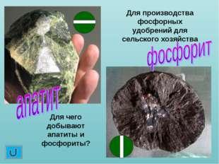 Для чего добывают апатиты и фосфориты? Для производства фосфорных удобрений д