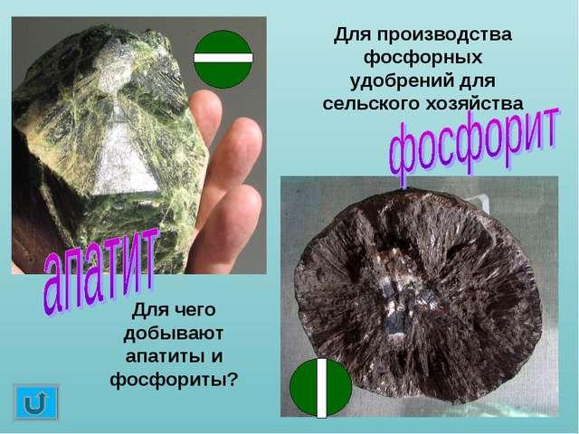 Для чего добывают апатиты и фосфориты? Для производства фосфорных удобрений д...