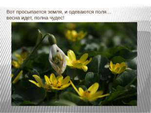 Вот просыпается земля, и одеваются поля… весна идет, полна чудес!