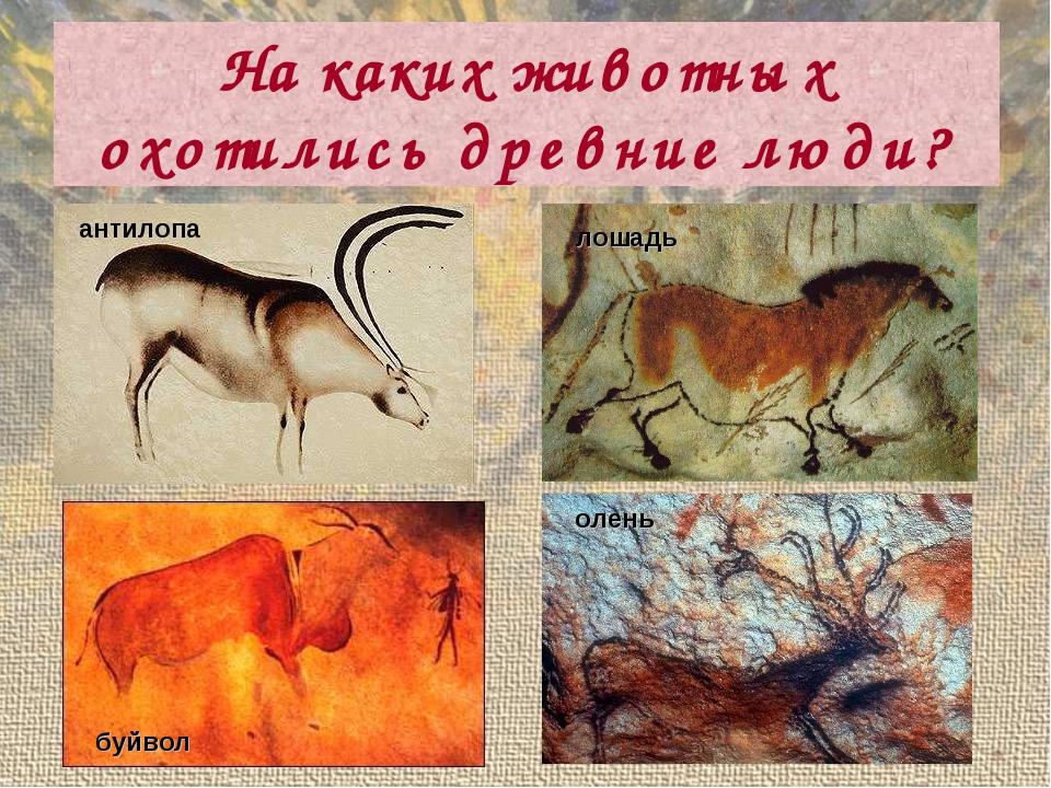 На каких животных охотились древние люди? антилопа буйвол лошадь олень