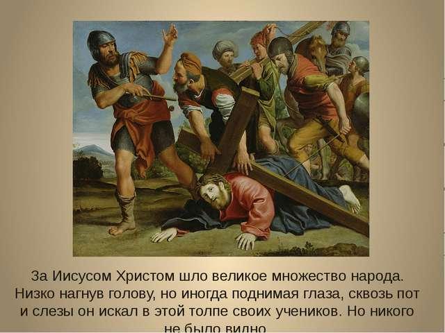 За Иисусом Христом шло великое множество народа. Низко нагнув голову, но иног...