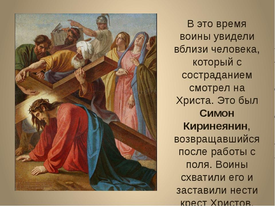 В это время воины увидели вблизи человека, который с состраданием смотрел на...