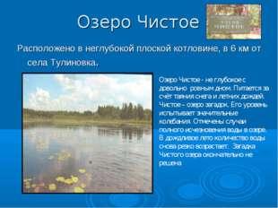 Озеро Чистое Расположено в неглубокой плоской котловине, в 6 км от села Тулин