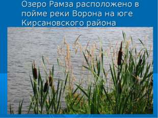 Озеро Рамза расположено в пойме реки Ворона на юге Кирсановского района