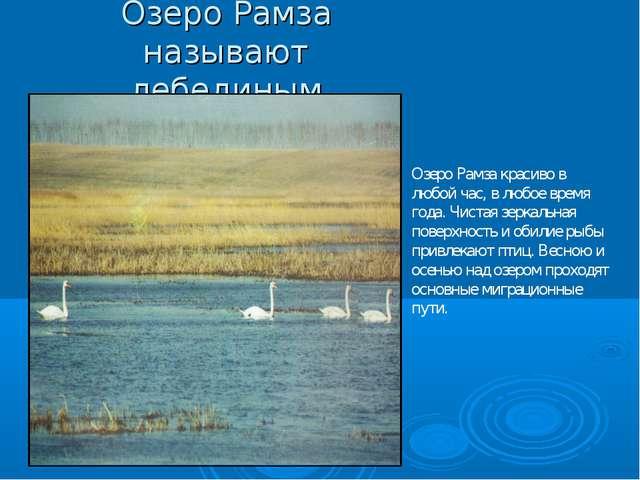 Озеро Рамза называют лебединым Озеро Рамза красиво в любой час, в любое время...