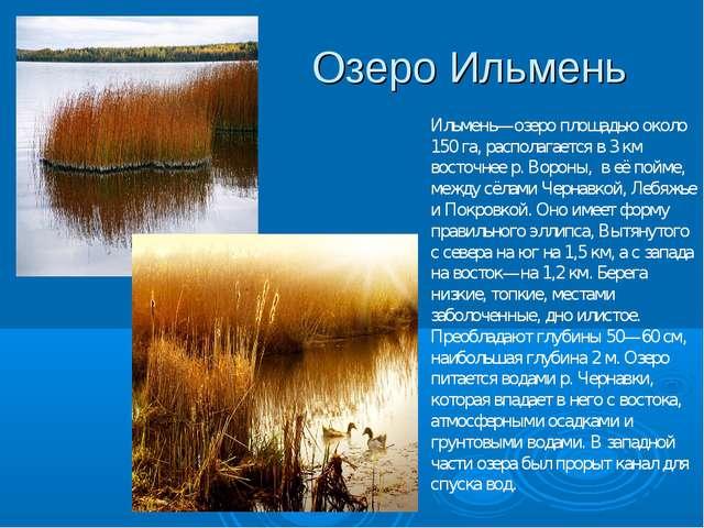 Озеро Ильмень Ильмень—озеро площадью около 150 га, располагается в 3 км восто...