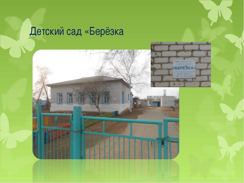 Детский сад «Берёзка