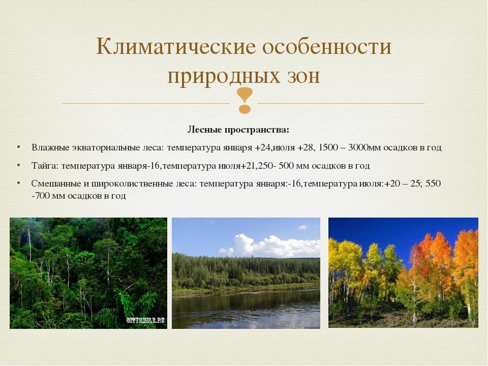 Лесные пространства: Влажные экваториальные леса: температура января +24,июля...