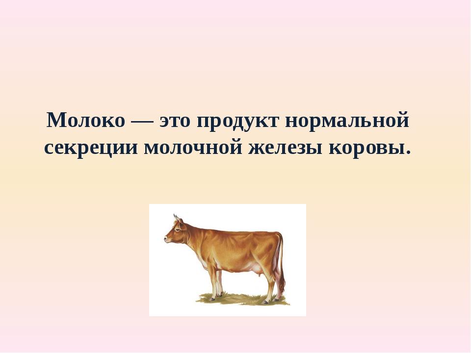 Молоко — это продукт нормальной секреции молочной железы коровы.