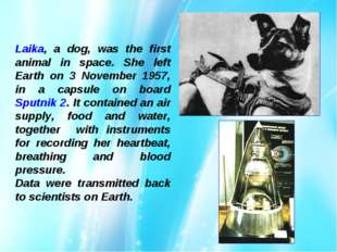 Laika, a dog, was the first animal in space. She left Earth on 3 November 195
