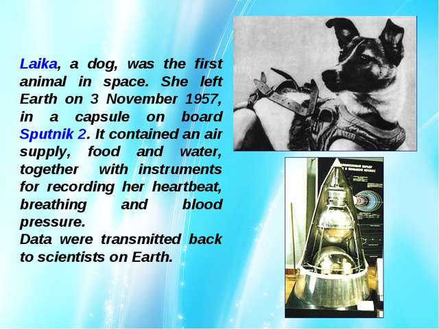 Laika, a dog, was the first animal in space. She left Earth on 3 November 195...