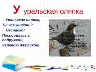 У уральская оляпка - Уральская оляпка, Ты как живёшь? Несладко! Поссорилась