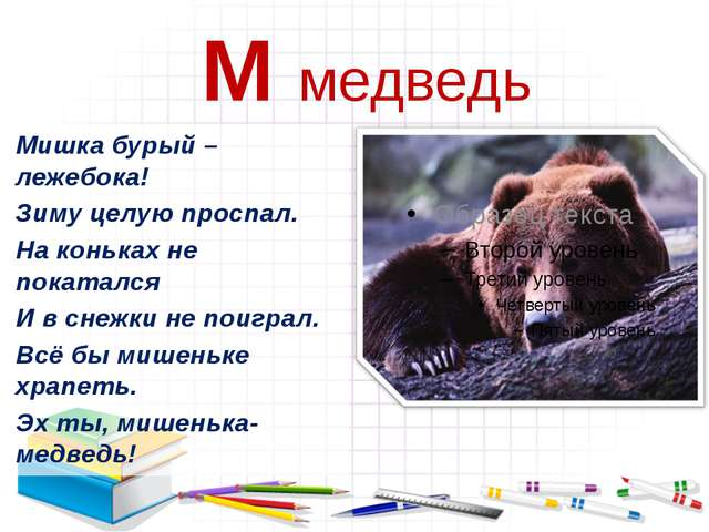 М медведь Мишка бурый –лежебока! Зиму целую проспал. На коньках не покатался...
