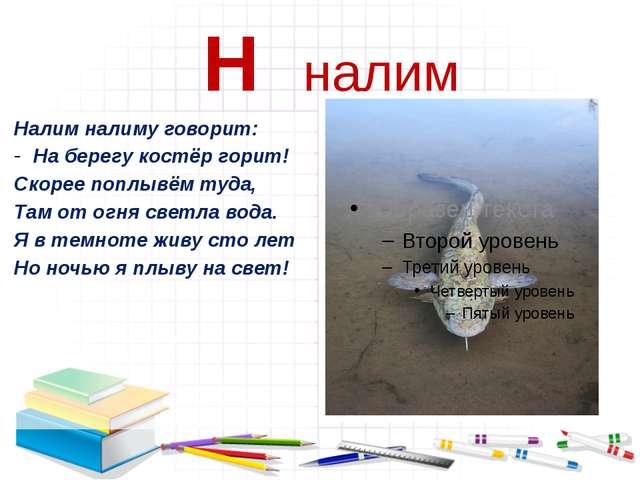 Н налим Налим налиму говорит: На берегу костёр горит! Скорее поплывём туда,...