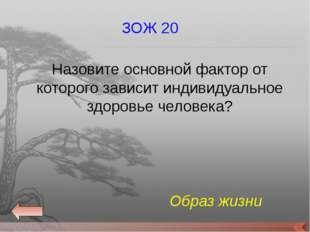 кот в мешке Природные явления 60 или 80?