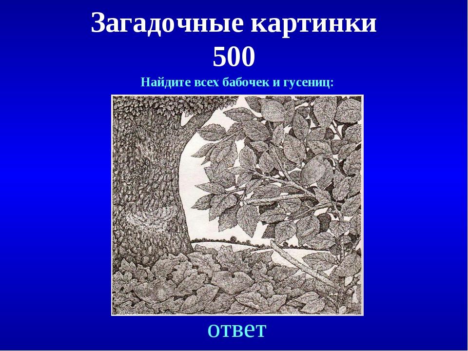 Загадочные картинки 500 ответ Найдите всех бабочек и гусениц: