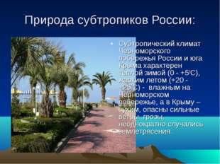Природа субтропиков России: Субтропический климат Черноморского побережья Рос