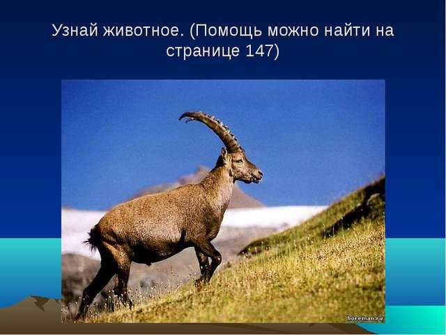 Узнай животное. (Помощь можно найти на странице 147)