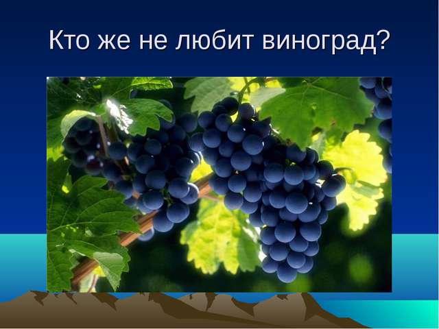 Кто же не любит виноград?
