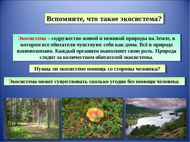 Вспомните, что такое экосистема? Экосистема – содружество живой и неживой при...