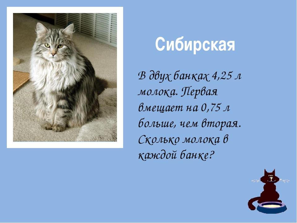 Сибирская В двух банках 4,25 л молока. Первая вмещает на 0,75 л больше, чем...