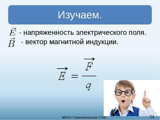 """- напряженность электрического поля. - вектор магнитной индукции. 14 МКОО """"C..."""