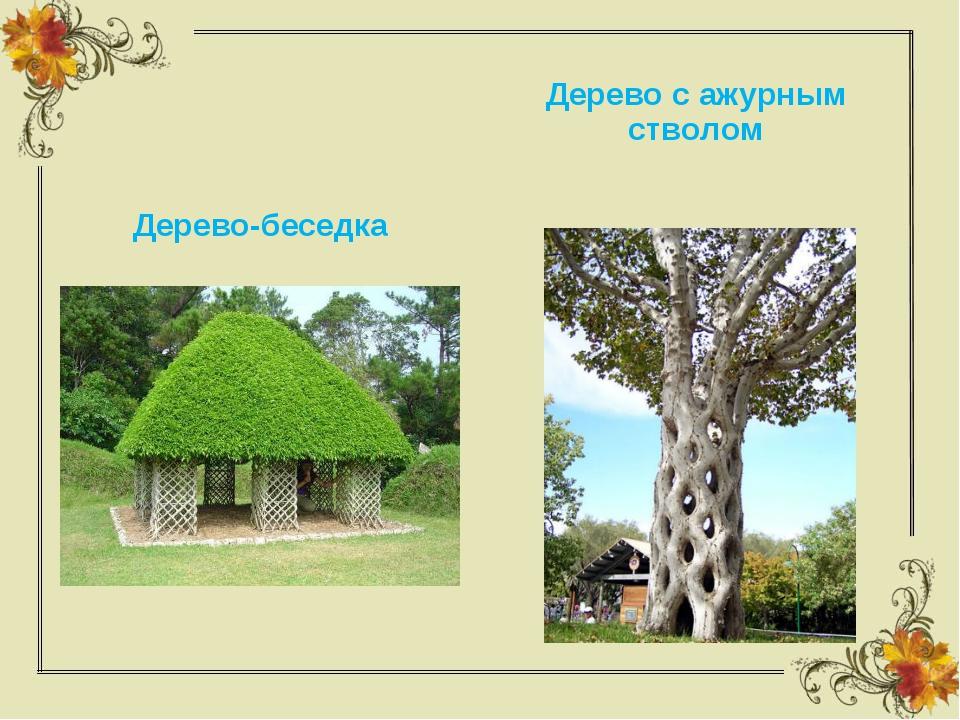 Дерево-беседка Дерево с ажурным стволом