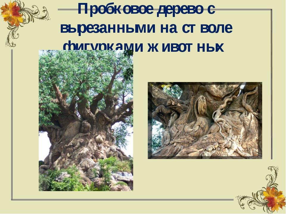Пробковое дерево с вырезанными на стволе фигурками животных